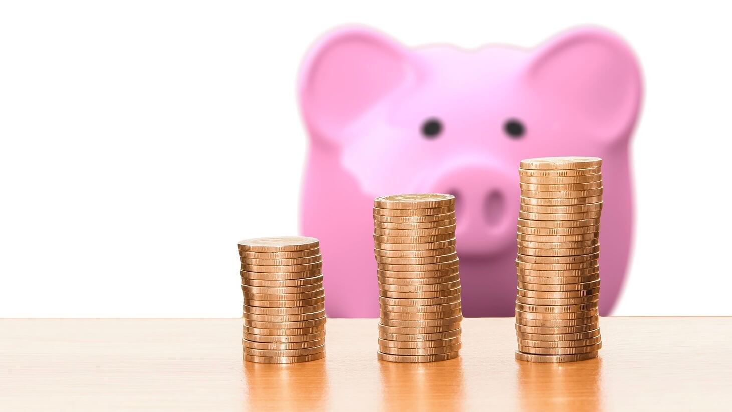 a-pig-is-watching-money-increase
