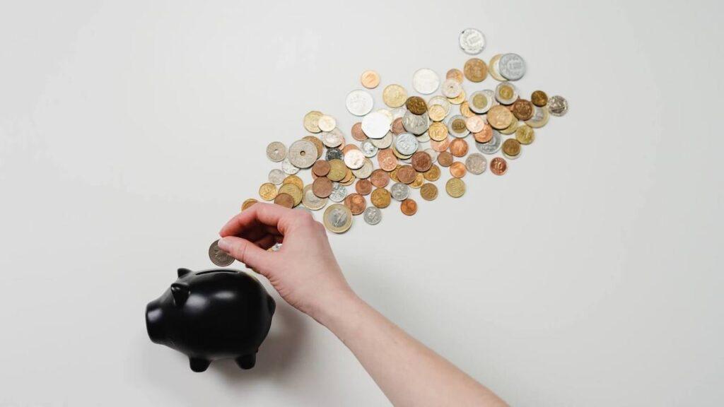 save-money-pig