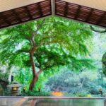 hoshino-resort-kai-hakone-spa-top